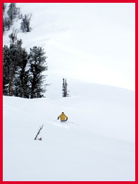 Powder Mountain: Powder Stashes; photo by Mitch Kaplan