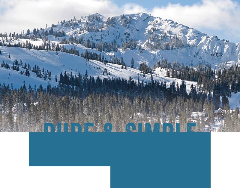Pure & Simple - Adventures Since 1939