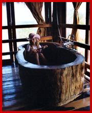 Log Bathtub Zahra Photo By T Thompson