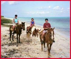 Cozumel by horseback; photo by Jane Ammeson