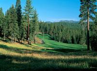 GolfTahoe.com - Coyote Moon
